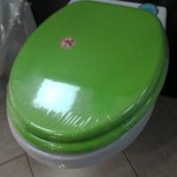 wc daska medijapan zelena